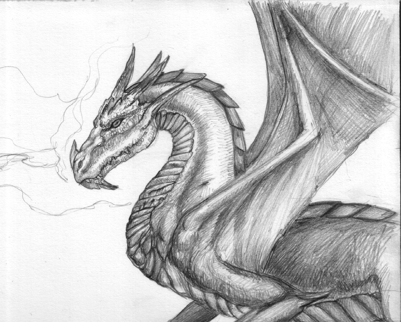 Dragon2 dessins et croquis - Dessiner dragon ...